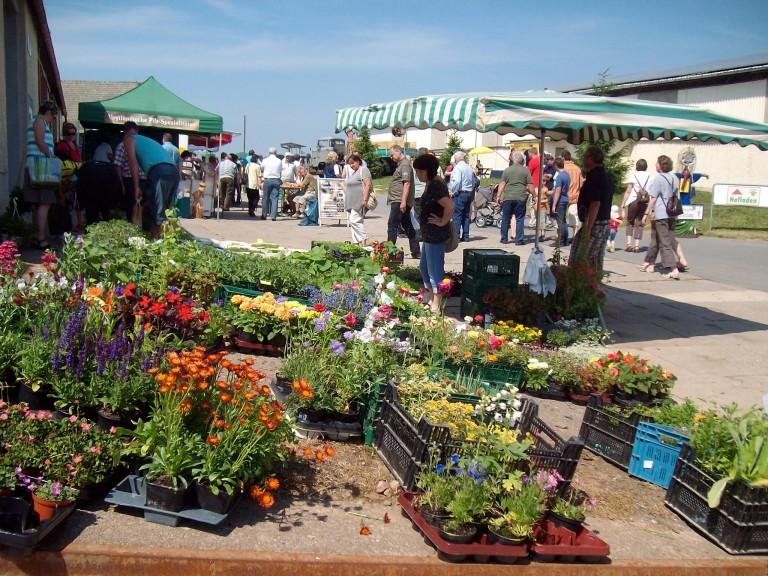 Hoffest - Bauernmarkt