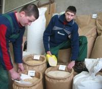 Prüfung Futtermittel in Mühle